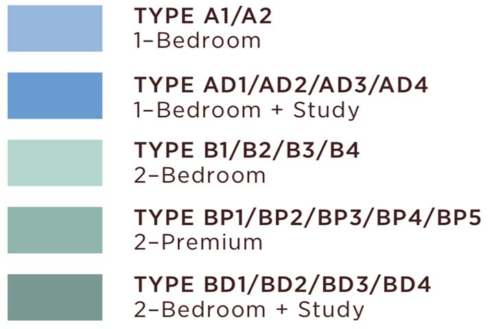 Type-1Br-to-2Br